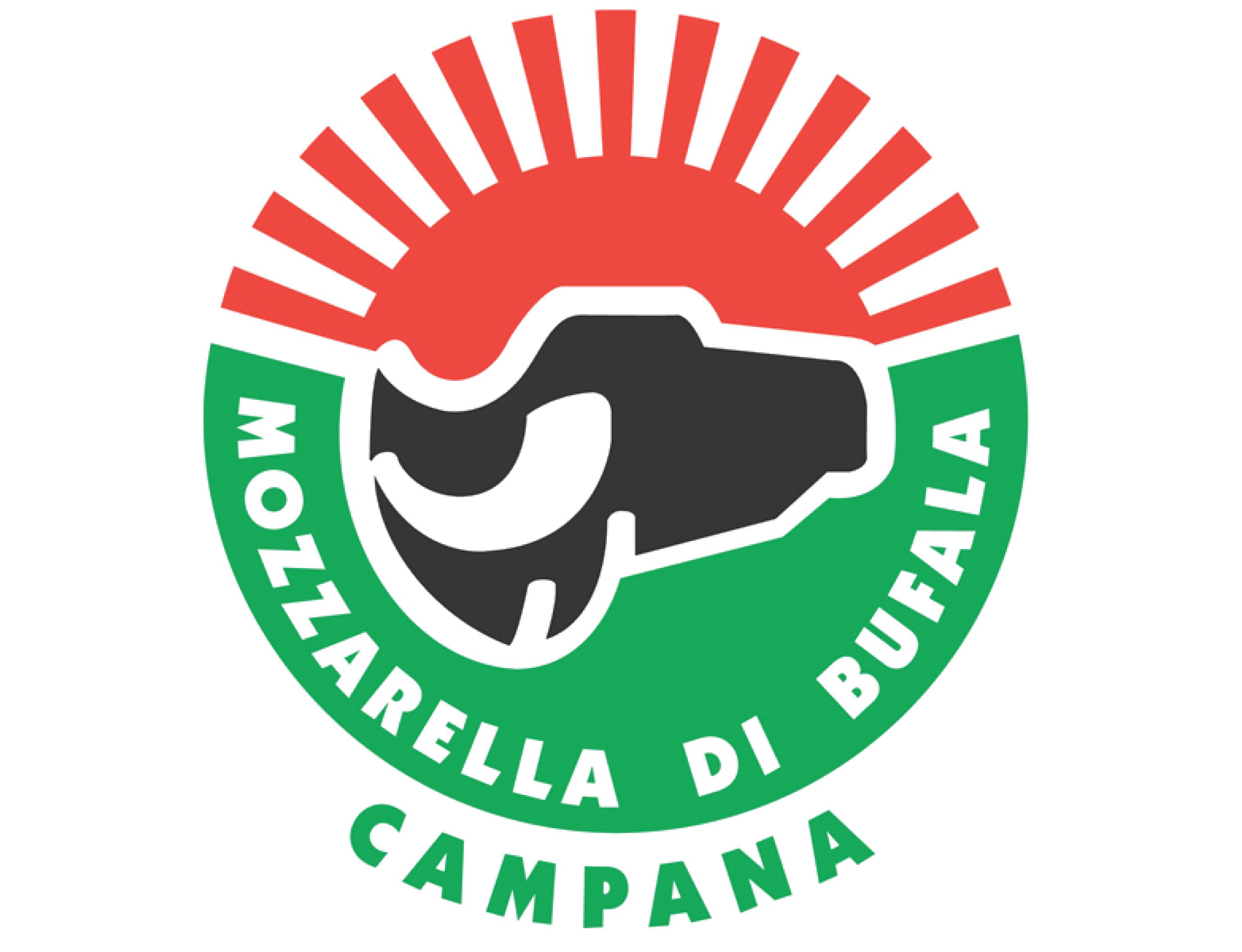 """Résultat de recherche d'images pour """"mozzarella di bufala campana"""""""